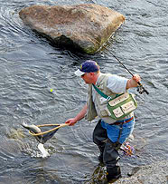Fisherman Nets a Brook Trout!