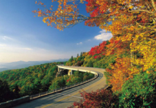 Drive the Blue Ridge Parkway!